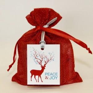 Custom Goody Bag - Red Sparkle