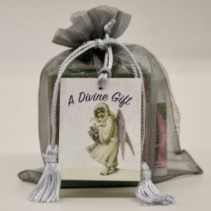 Peppermint Silver Goody Bag